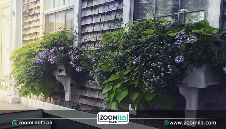 زیباسازی حیاط خانه