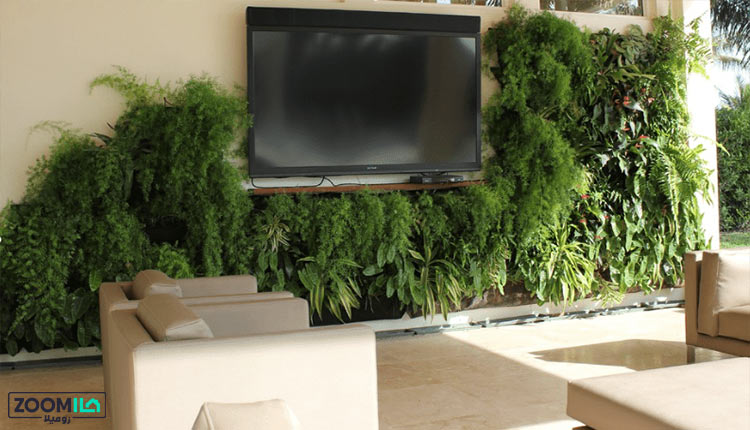 ساخت دیوار سبز بر روی دیوار