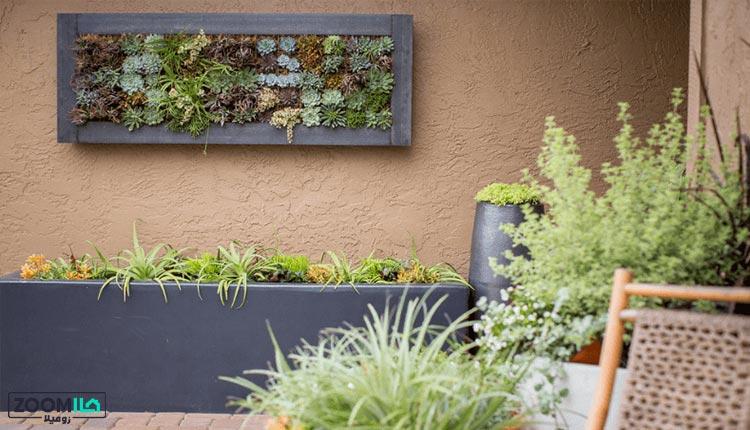 ساخت دیوار سبز در فضای باز