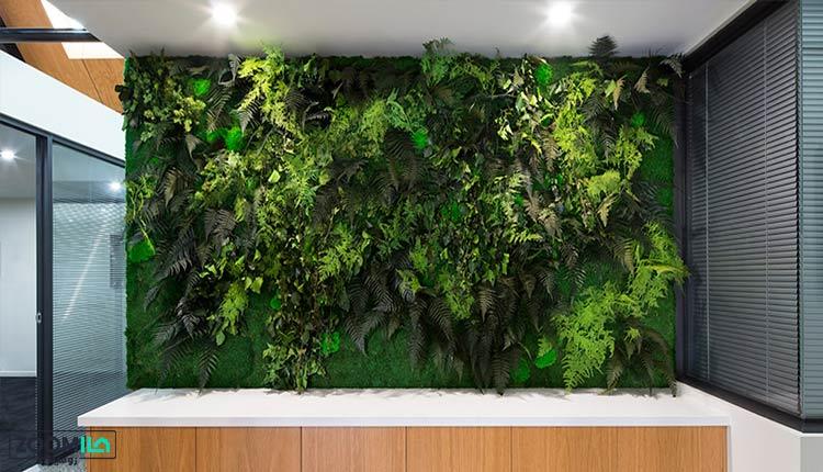 دیوار سبز زیبا