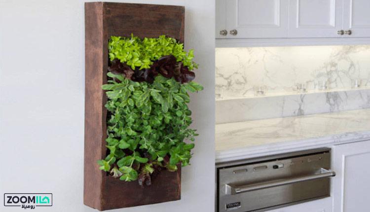 ساخت دیوار سبز در آشپزخانه