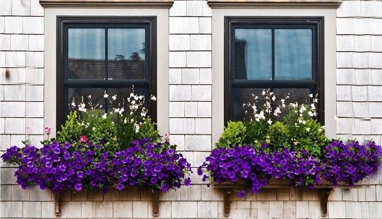 آیا میدانید ویژگی های همسایه خوب چیست؟