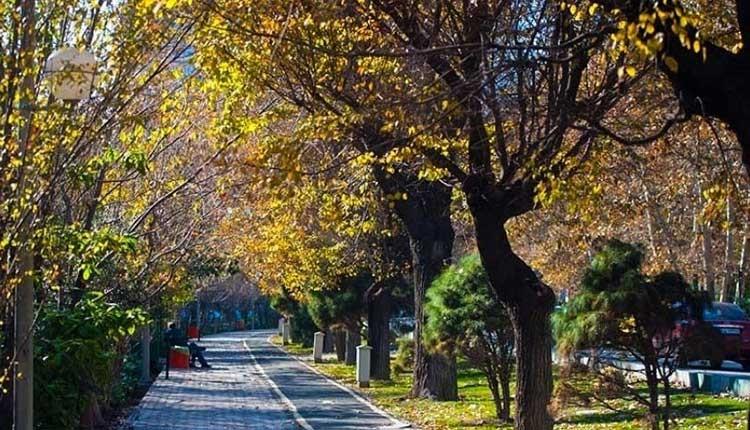 سرسبزترین محله تهران